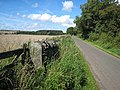 Country road from Sandhoe to Fawcett - geograph.org.uk - 935605.jpg