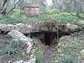 Cova del camp des Bisbe.jpg