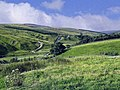 Coverdale at Coverhead - geograph.org.uk - 752563.jpg