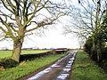 Cow Pasture Lane, Ellerton - geograph.org.uk - 308370.jpg