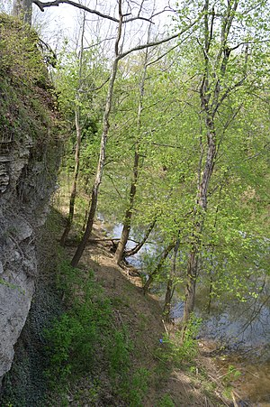 Paint Creek (Johnson County, Kentucky) - Cliff along Paint Creek