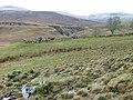 Croftland at Balnaknock - geograph.org.uk - 1106815.jpg