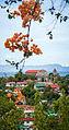 Culion Island, Palawan.jpg