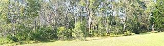 Cumberland Plain Woodland