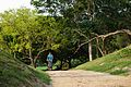Cyclist on Pathway - Chandraketugarh - Berachampa - North 24 Parganas 2015-04-11 7283.JPG