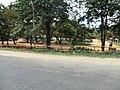 Dambulla, Sri Lanka - panoramio (64).jpg