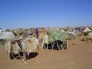 Picture of IDP camp in Sudan resulting from th...