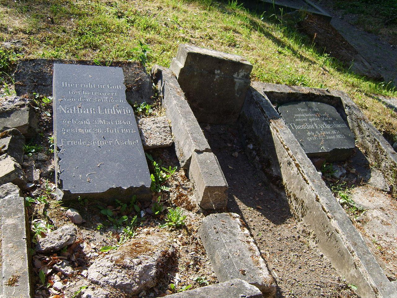 Dargun-Jüd-Friedhof-080601-046.JPG