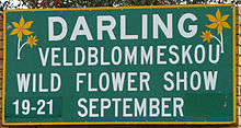 Darling Wild Flower Show.jpg