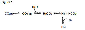 Davenport diagram - Figure 1. Important acid-base reactions involving carbon dioxide.