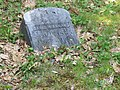 David M. Annand, Headstone, Marks Cemetery, Orland, Maine.jpg