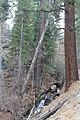 Davis Creek Park - panoramio (35).jpg