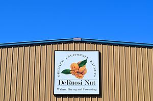 Escalon, California - DeRuosi Nut Headquarters