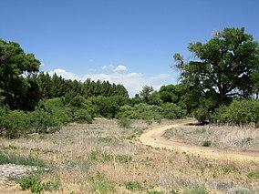 Dead Horse Ranch.jpg
