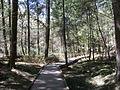 Delaware Water Gap National Recreation Area - Pennsylvania (5677786851).jpg