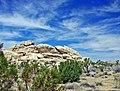 Desert Sky, Joshua Tree NP 2-13 (15776797253).jpg