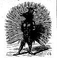 Dictionnaire infernal - Adrammelech.jpg