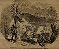 Die erhebung des volkes in Baden für die deutsche republik im frühjahr 1848 (1848) (14769416872).jpg