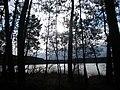 Domaine de tremelin - panoramio (4).jpg