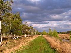 Dosenmoor Mittelweg.JPG