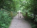 Dovedale - Footpath heading back to Ilam Rock - geograph.org.uk - 862494.jpg