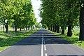 Droga Krajowa 241 - panoramio.jpg