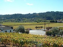 Dry Creek Valley 2005.jpg
