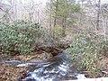 Eastern, VA, USA - panoramio.jpg