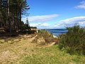 Edge of Culbin Forest at Findhorn Bay - panoramio.jpg
