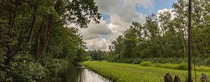 Eendenkooi De Grote Otterskooi, gelegen in provincie Overijssel. Aanvaarroute naar kooi 02.jpg