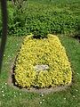 Ehrengrab Friedrich Nebelthau (Hauptfriedhof Kassel)1.jpg