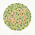 Eight Ishihara charts for testing colour blindness, Europe Wellcome L0059162.jpg