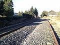 Eisenbahnstrecken - panoramio.jpg