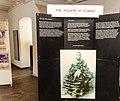 Elmina Castle Museum (17 of 22).jpg
