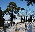 Elmswell churchyard in the snow - geograph.org.uk - 1625585.jpg