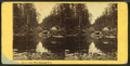 Emerald Pool, White Mountains, N.H, by Pease, N. W. (Nathan W.), 1836-1918.png