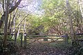 Entrance to Park Wood - geograph.org.uk - 1568985.jpg
