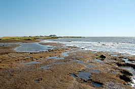 Eroded peat at low tide (15572651857).jpg