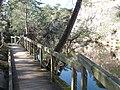 Erquy-Passerelle des Lacs bleus.jpg