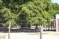 Escuela Pública Salinas Nº 136 - panoramio - Andrés Franchi Ugart… (12).jpg