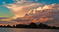 Esteros Del Ibera, Corrientes, Argentina, 2nd. Jan 2011 - Flickr - PhillipC (1).jpg