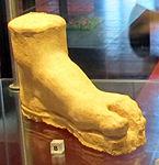 Ex-voto della collezione ricci busatti, piede, III-II sec. ac. 02.jpg