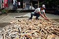 Examining the Gaplek at a market in Bantul, near Yogyakarta (10694505986).jpg