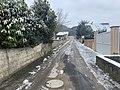 Extrémité de l'avenue de Saint-Maurice depuis l'avenue Henri Deschamps (neige, février 2021).jpg