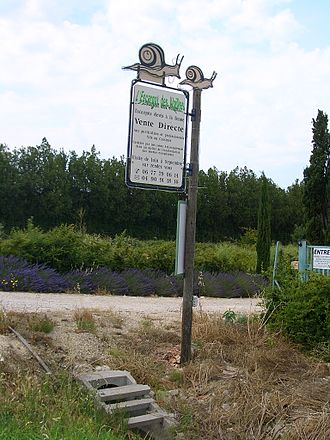 Heliciculture - A snail farm near Eyragues, Provence, France