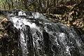 Falling Waters State Park 2.jpg