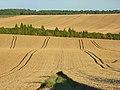Farmland, Farnborough - geograph.org.uk - 928536.jpg