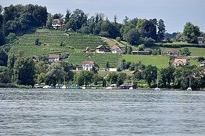 Rapperswil-Jona/Hombrechtikon–Feldbach - The site of the prehistoric settlement as seen from the Zürichsee-Schifffahrtsgesellschaft (ZSG) motorship ''Helvetia''