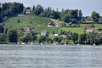 The site of the prehistoric settlement Seegubel as seen from the Zürichsee-Schifffahrtsgesellschaft (ZSG) motorship Helvetia