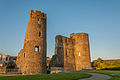 Ferns Castle 1.jpg